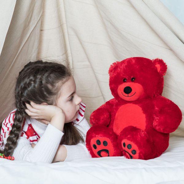 Daney teddy bear 25 red 001