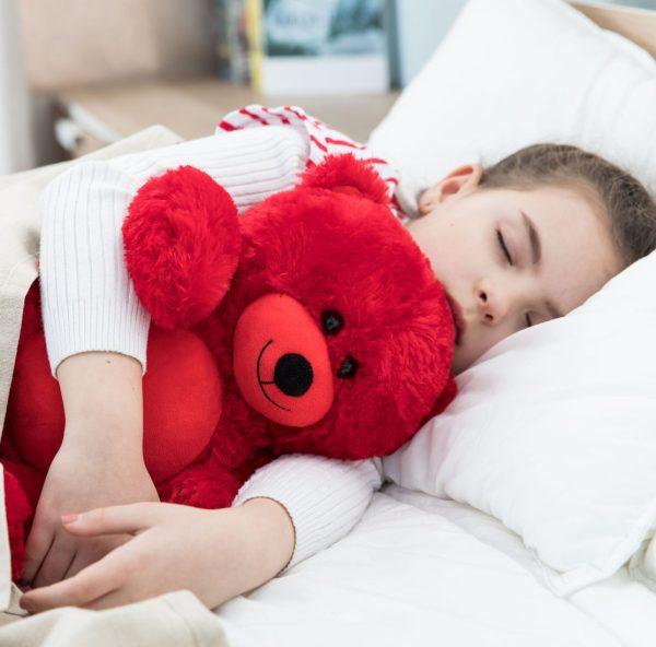 Daney teddy bear 25 red 002