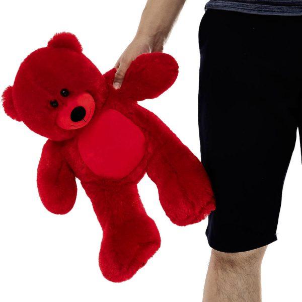 Daney teddy bear 25 red 005