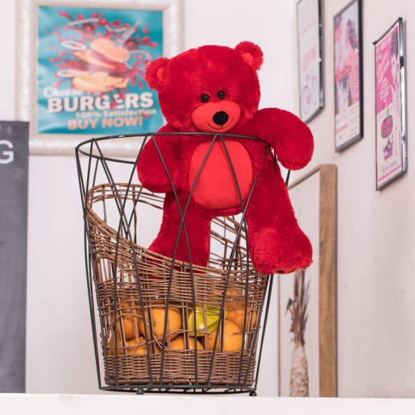 Daney teddy bear 25 red 009