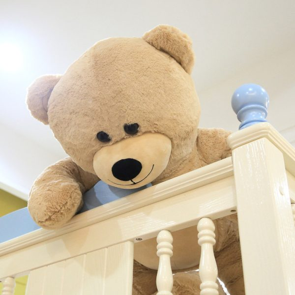 Daney teddy bear 3foot light brown 006