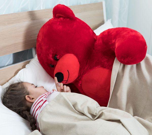 Daney teddy bear 3foot red 009