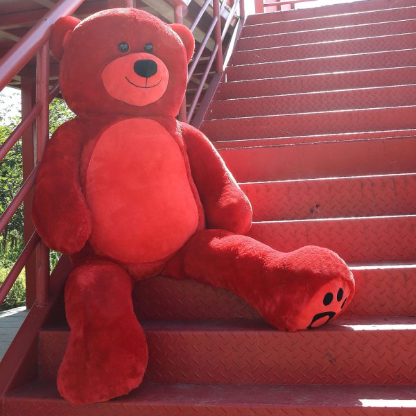 Daney teddy bear 6foot red 006