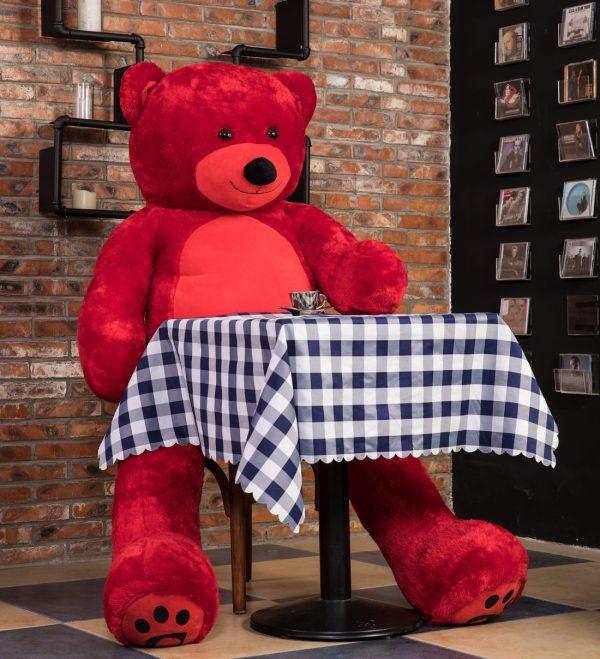Daney teddy bear 6foot red 009
